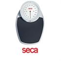 Immagine di Bilancia Meccanica da Terra SECA 750