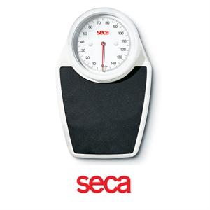 Immagine di Bilancia Meccanica da Terra SECA 761